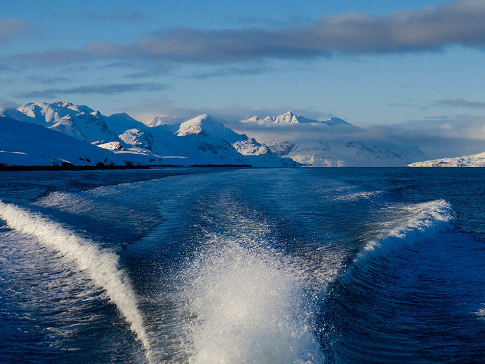 powderbird-greenland-heli-skiing-ship-kisaq31.jpg