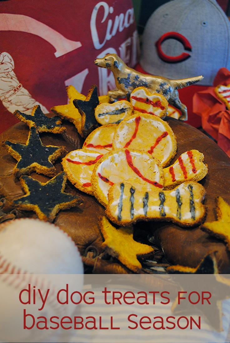 Homemade Dog Treats for Baseball Season, Dog Treats, Dog Treat Recipe #Baseball #YogurtIcing #HealthyDogTreats #DIYDogTreats #DIY #OpeningDay #CincinnatiReds