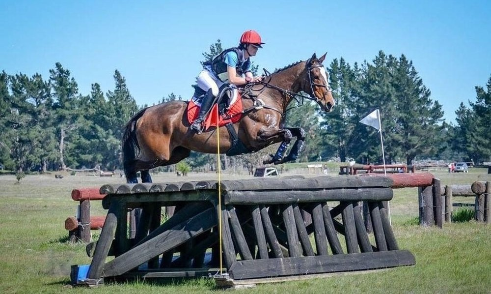 Pic credit to @em.vibeequine on Instagram. OTTB competing to 2* level in New Zealand.