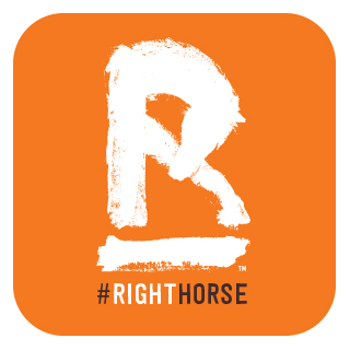 the Right horse initiative is dedicated the promoting the adoption of rescue horses. they offer a number of different resources to help people find the perfect match for them in a rescue horse.