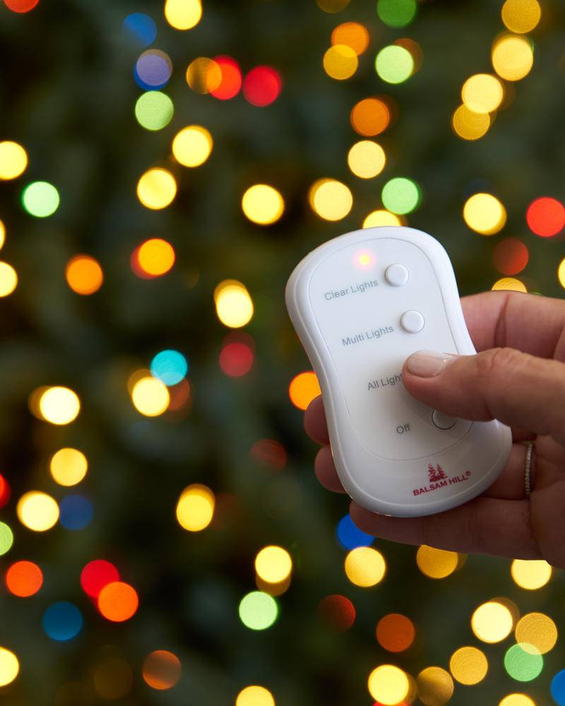 Copy of Remote Control Multi-colored Lights