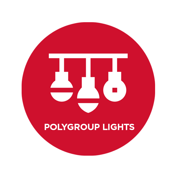 PolygroupLights_logo2 copy copy.png