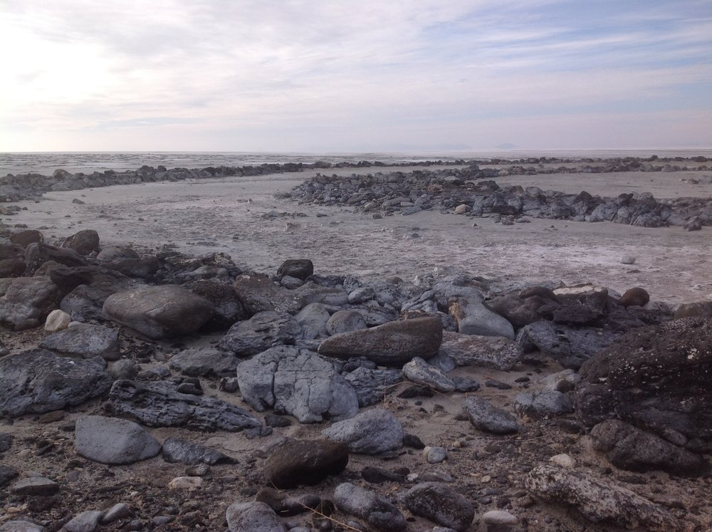 Figure 5   Spiral Jetty  (detail)  Nov.21 2014