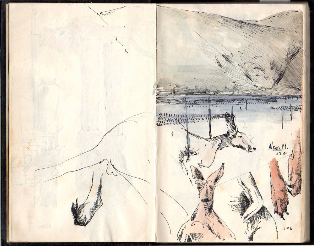 Drawing book 6 1988   Kangaroos in Peat's Crater and Alison pt .
