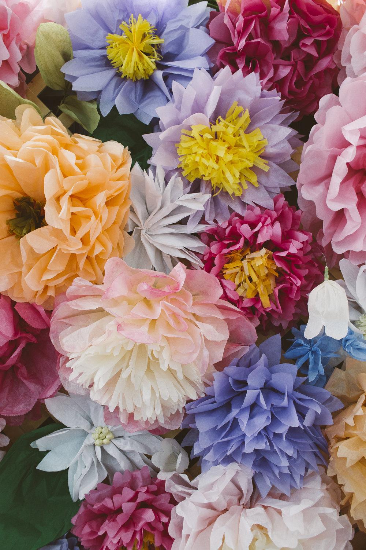 Radka Wedding-Radka April 18 2015-0413 - Copy.jpg