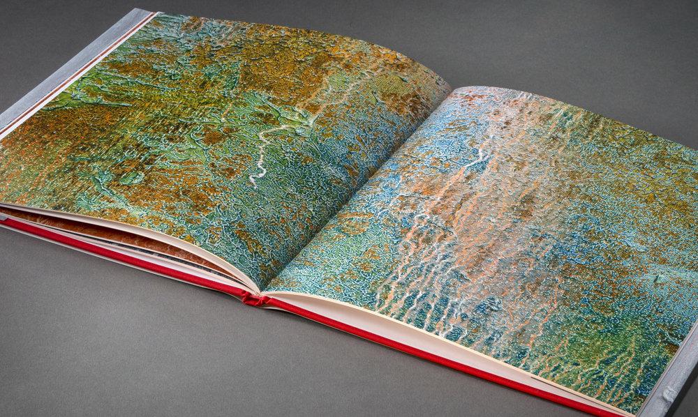 Jerry Carniglia book
