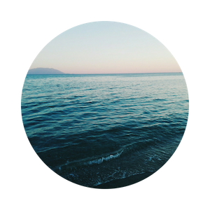 """Accountability - """"A rising tide lifts all boats."""" With access to our members only Facebook group, ELEVATE members share successes and offer support to one another and discuss relevant topics and strategies within the community."""