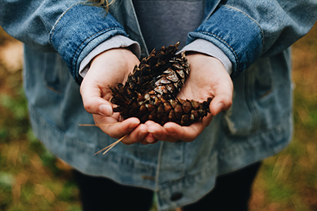 girl with pinecones.jpg