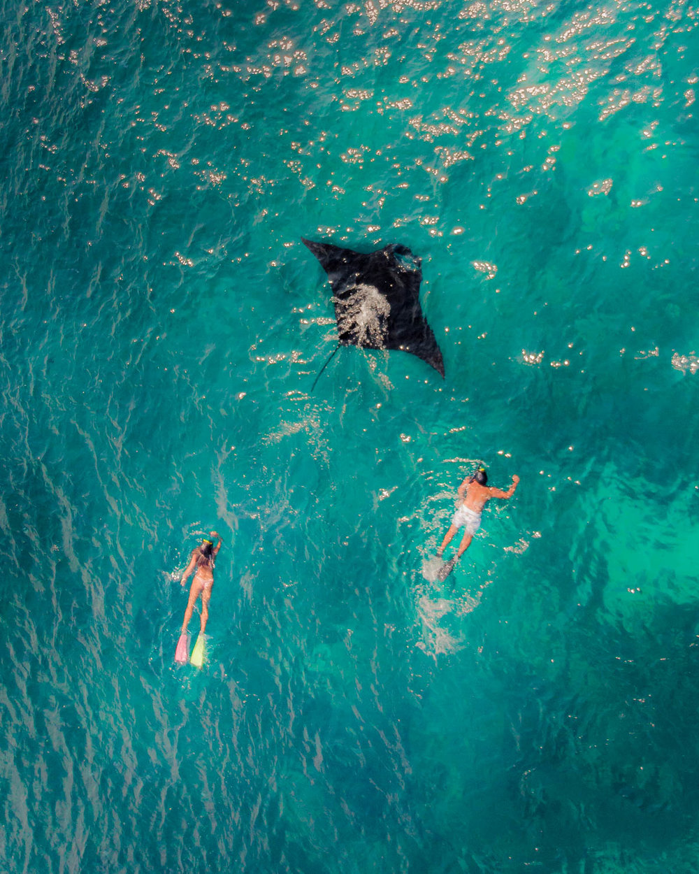 Still one of my favourite shots because we have all seen images of people snorkelling with marine life under water, but I have never seen one other from above!