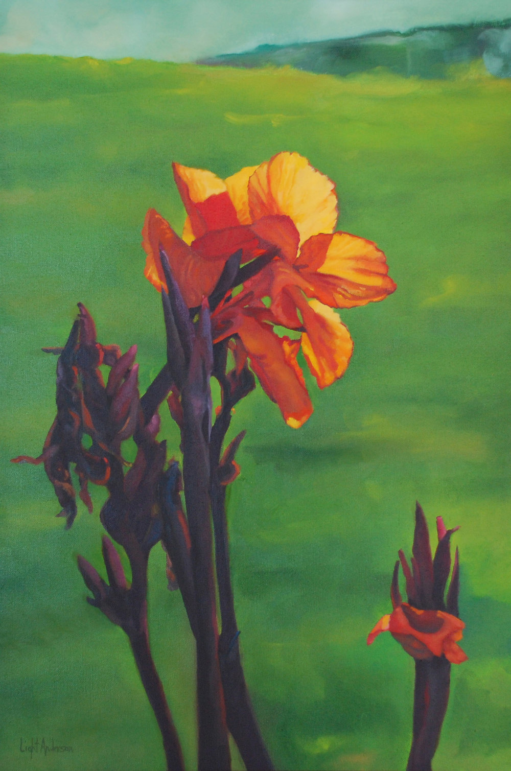 Cannas and Green 1