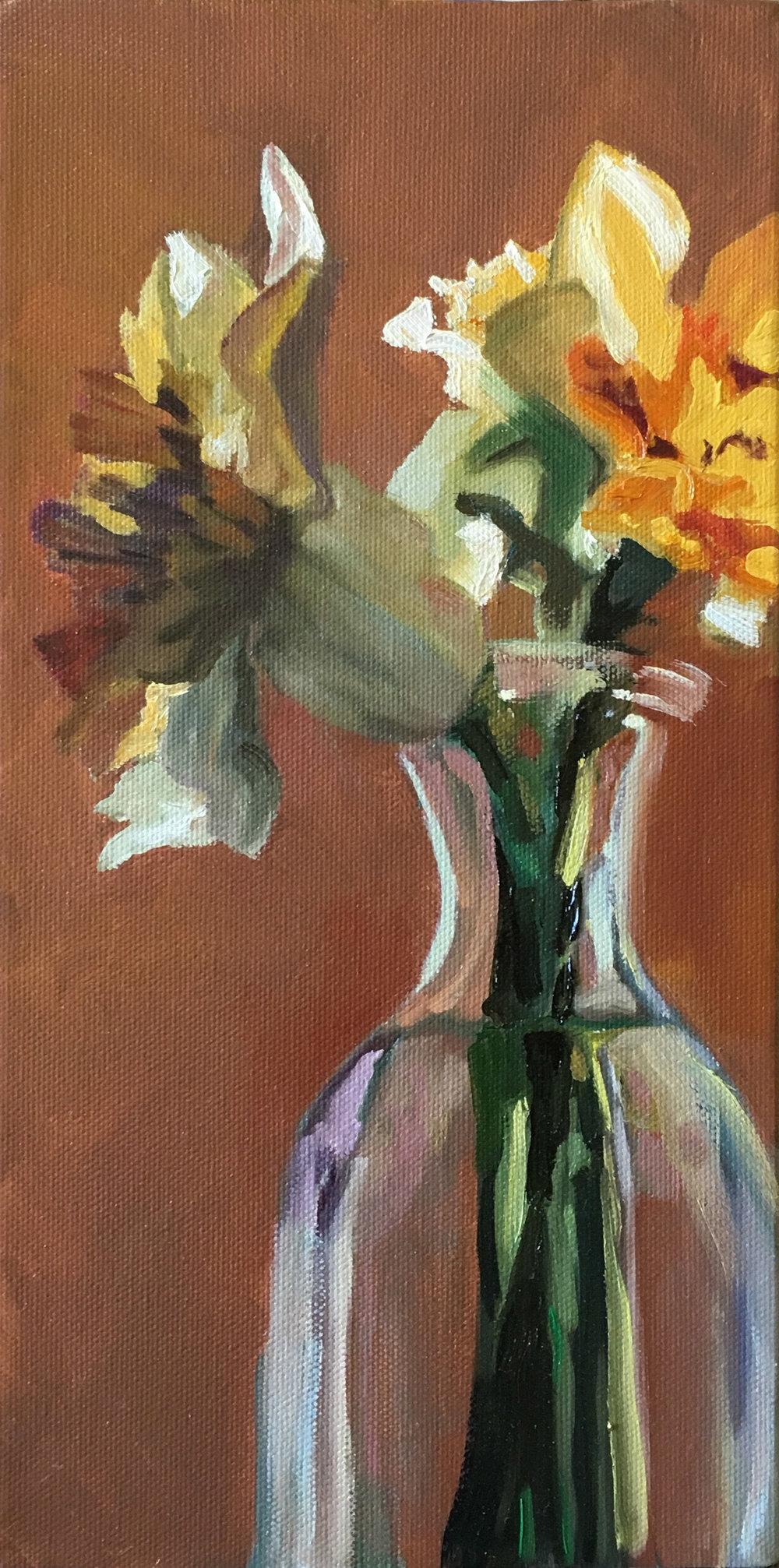 Daffodil Study 2
