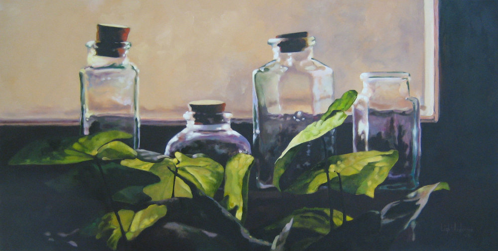 Plant and Bottles