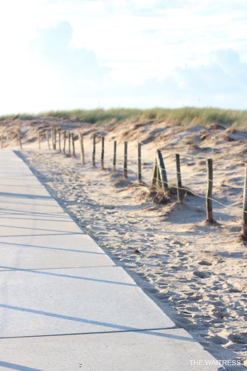 duenen-in-nordwijk-holland-thewaitress-blog.jpg