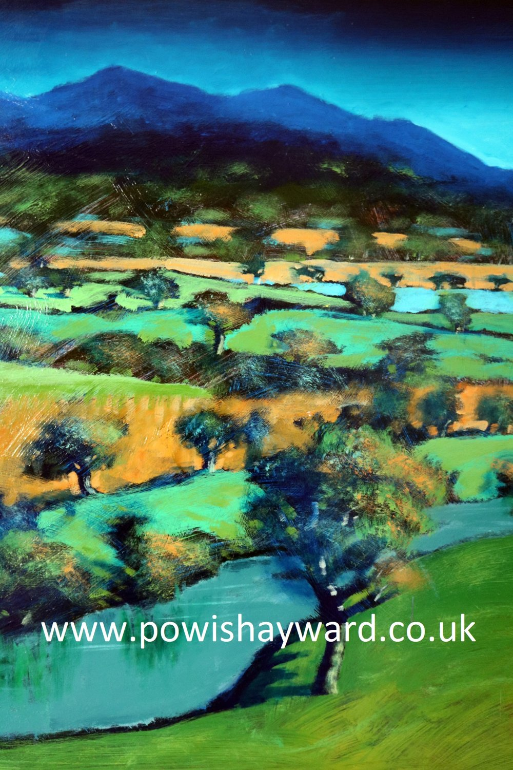 malverns detail 139x97 £3000.jpg