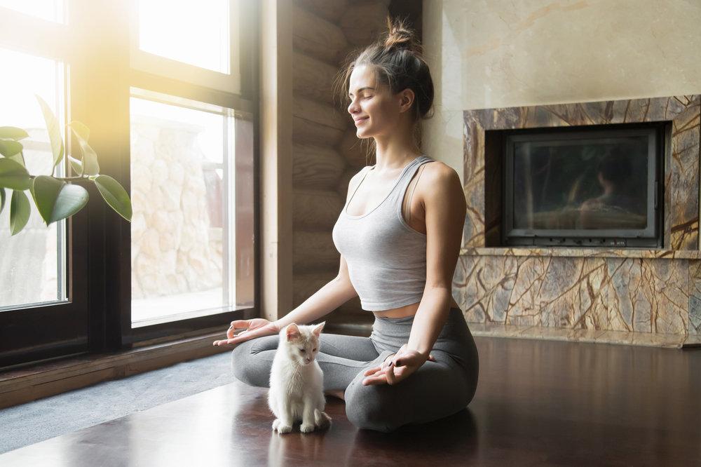 35 Days of Yoga - a 6-week yoga program to reduce stress, build strength, gain flexibility, and live a healthy yoga lifestyle.
