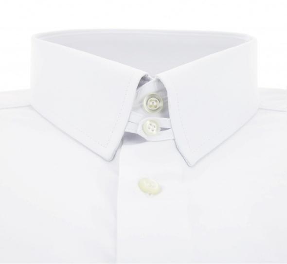 collars 7.jpg