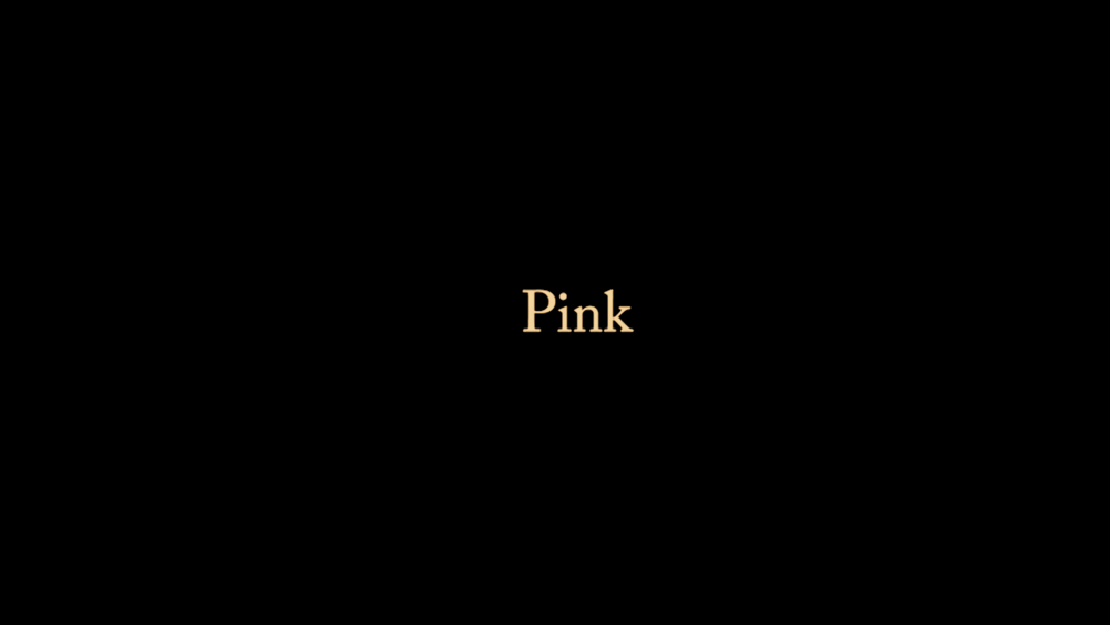 PINK (2016)  Written & Directed by Samuel Dennis  Cinematography by Marcus Rodert