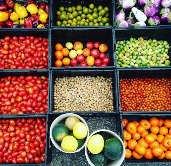 summer crops.jpg