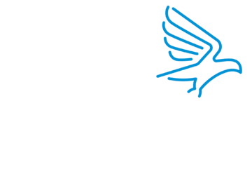 Immigrant Assist Logo_Reverse-lighter.png