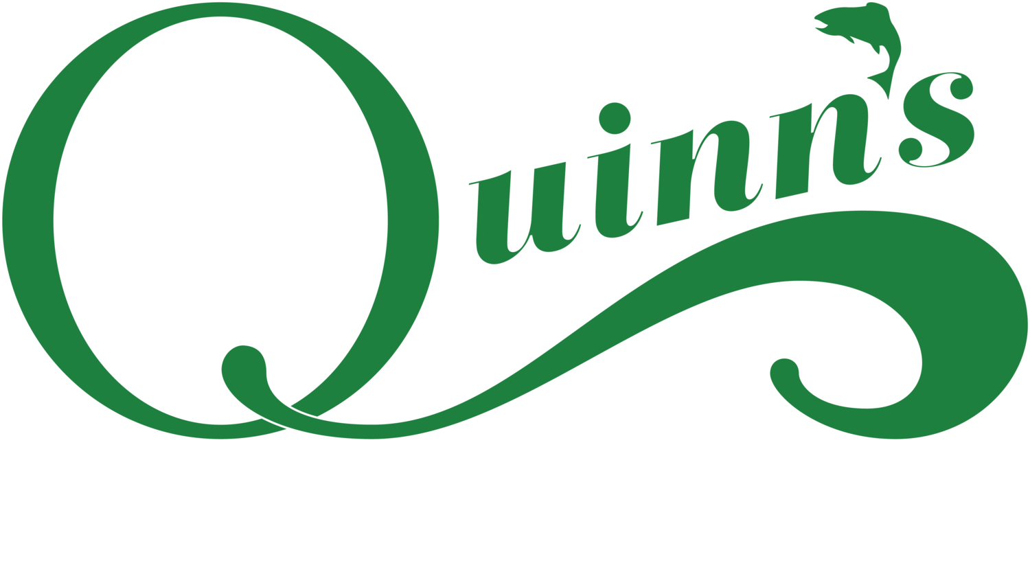 Quinn's Hot Springs Resort