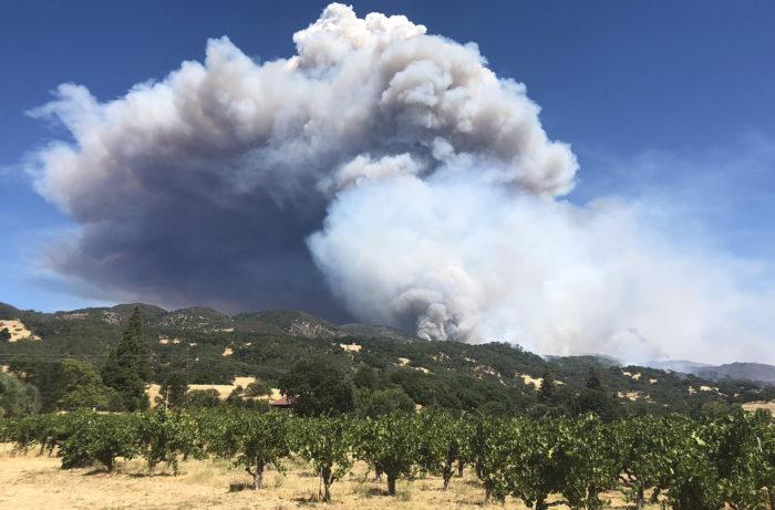 Mendocino Complex Fire. Image courtesy of Moniker Wine Estates