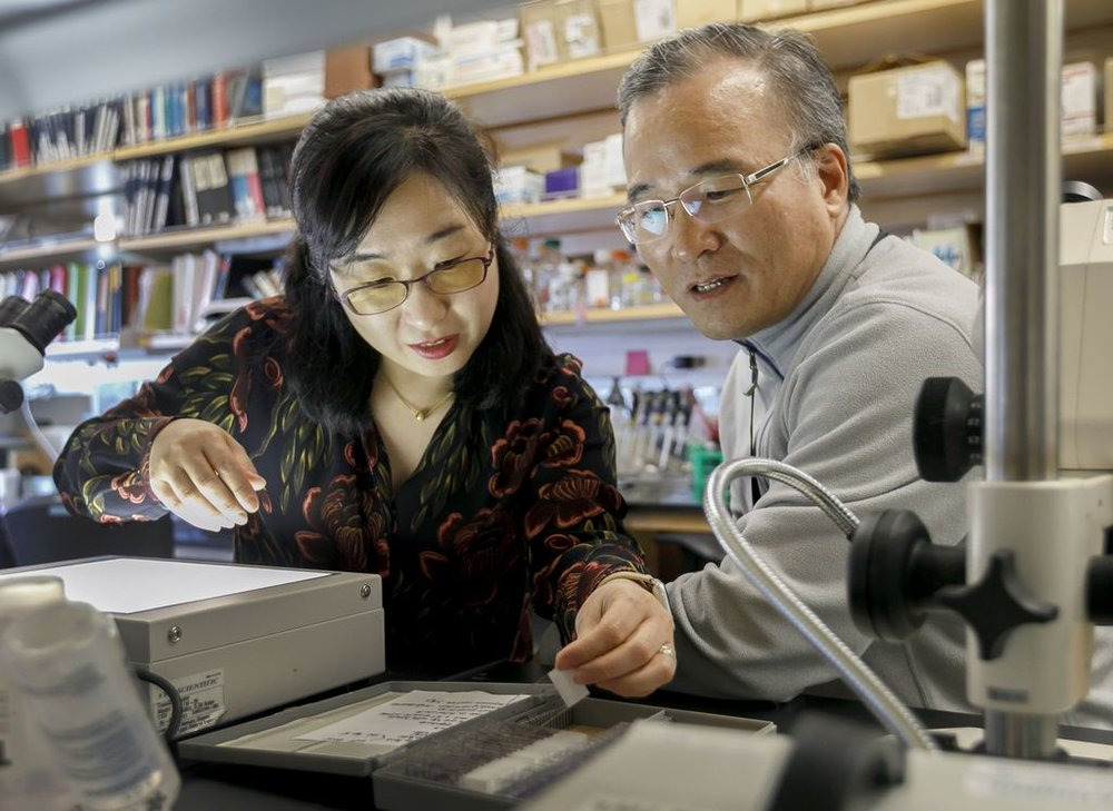 Soo-Kyung Lee, Ph.D., and her husband Jae W. Lee, Ph.D., study genes that impact the development and function of organs such as the heart and brain. This work became more personal when their daughter Yuna was diagnosed with a mutation of one of the very genes the couple has been studying for decades. (OHSU/Kristyna Wentz-Graff)