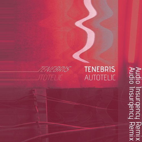 Tenebris - Autotelic (Audio Insurgency Remix) - BIBLIOTEKA019 - SINGLE