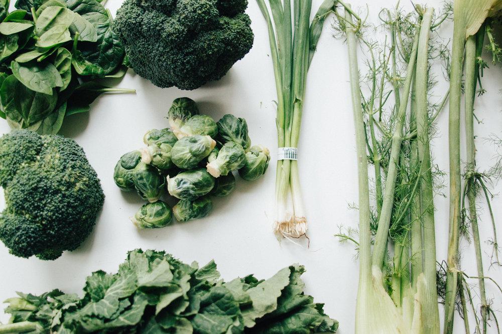 Plantd_Ingredients3.jpg
