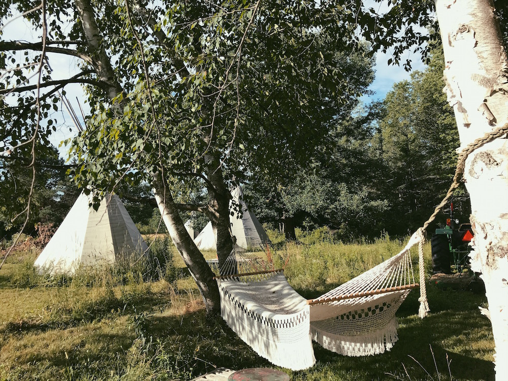 Delmi Hammock at Saipua's Worlds End Farm