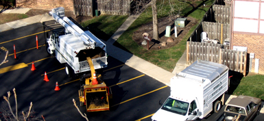 Russell Tree Experts Commercial Tree Services