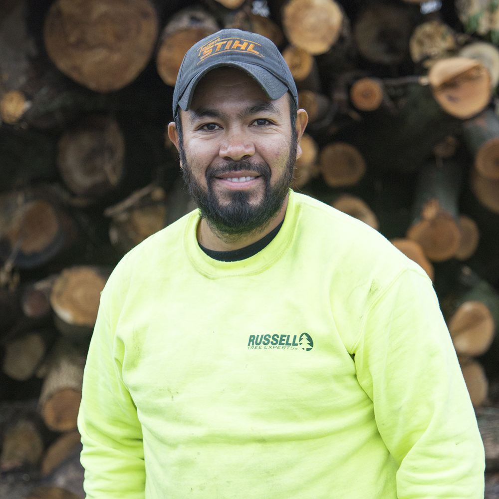Juvé Perez - PRODUCTION ARBORISTJuvé has been with Russell Tree Experts since 2010 and can often be found operating a bucket truck, completing tree work in record speeds with unparalleled precision and care.