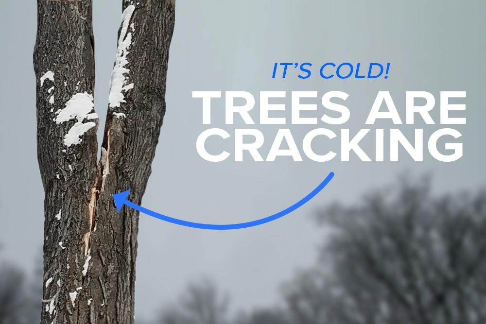 180102-check-for-cracks.jpg