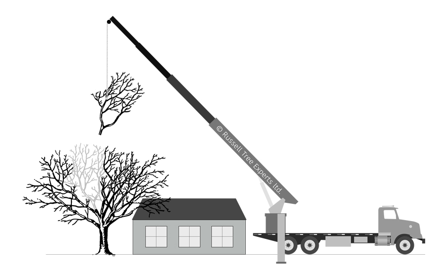 MECHANICAL -  When conditions allow and property needs protected on the site, mechanically assisted tree removal is a safe and efficient way to remove trees with little to no impact on the surrounding area.