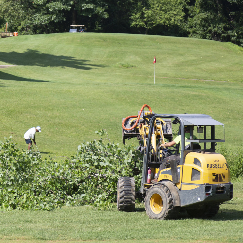 Golf Course Maintenance - Providing tree care on golf courses is unique:the turf and trees are vital for the course layout. We're trusted by many to follow the specific plans to maintain the play of the course.