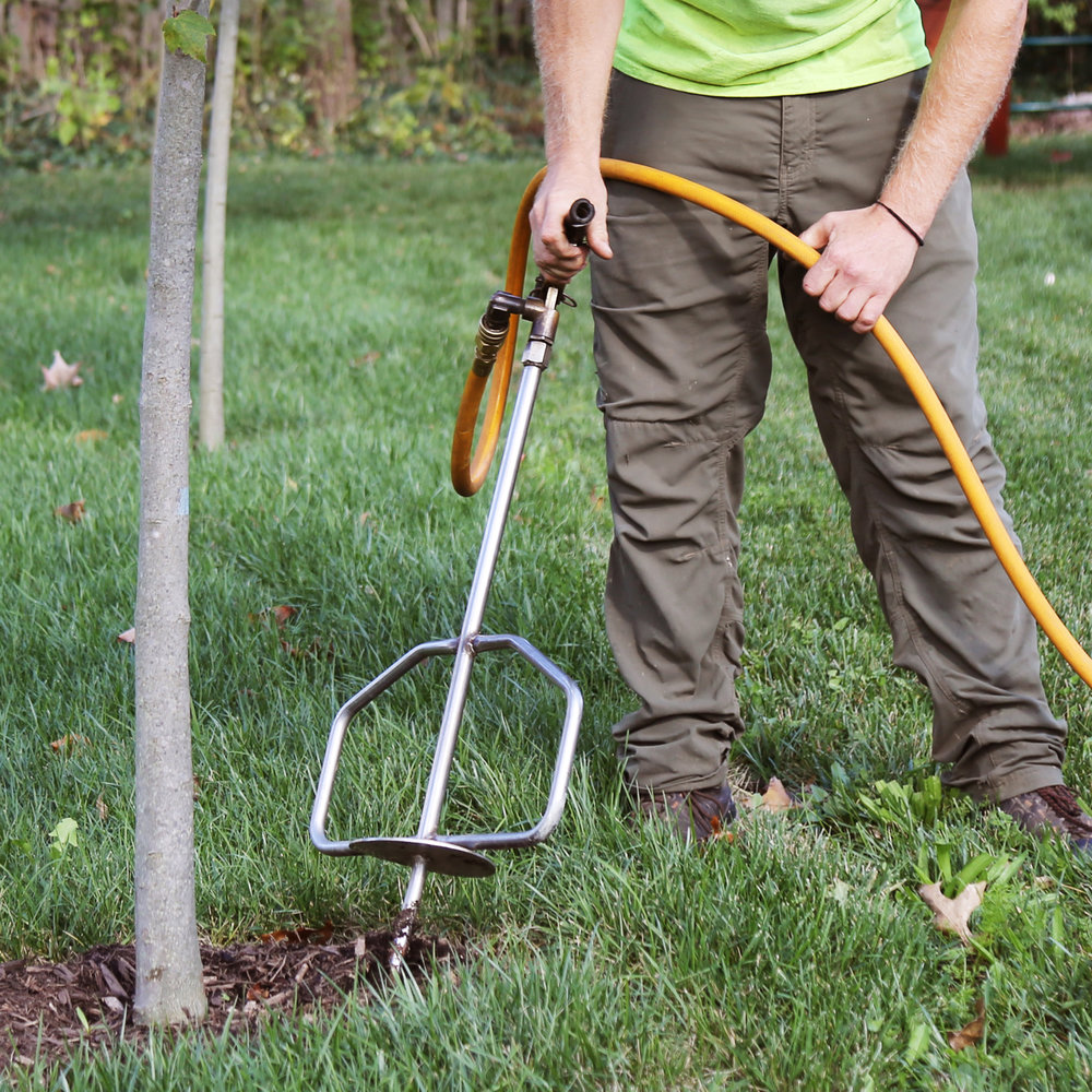 Tree Wellness - From fertilization to pest and disease management, our tree wellness team excels in providing the best plant health care to help keep trees healthy.Click here to See Services