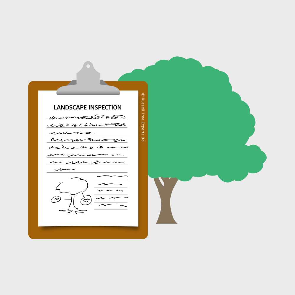 Landscape Inspections - Our ARBOR ANSWERS™ experts evaluate the current health and associated risks mature trees can pose to existing structures, making the pre-purchase inspection process truly compete.