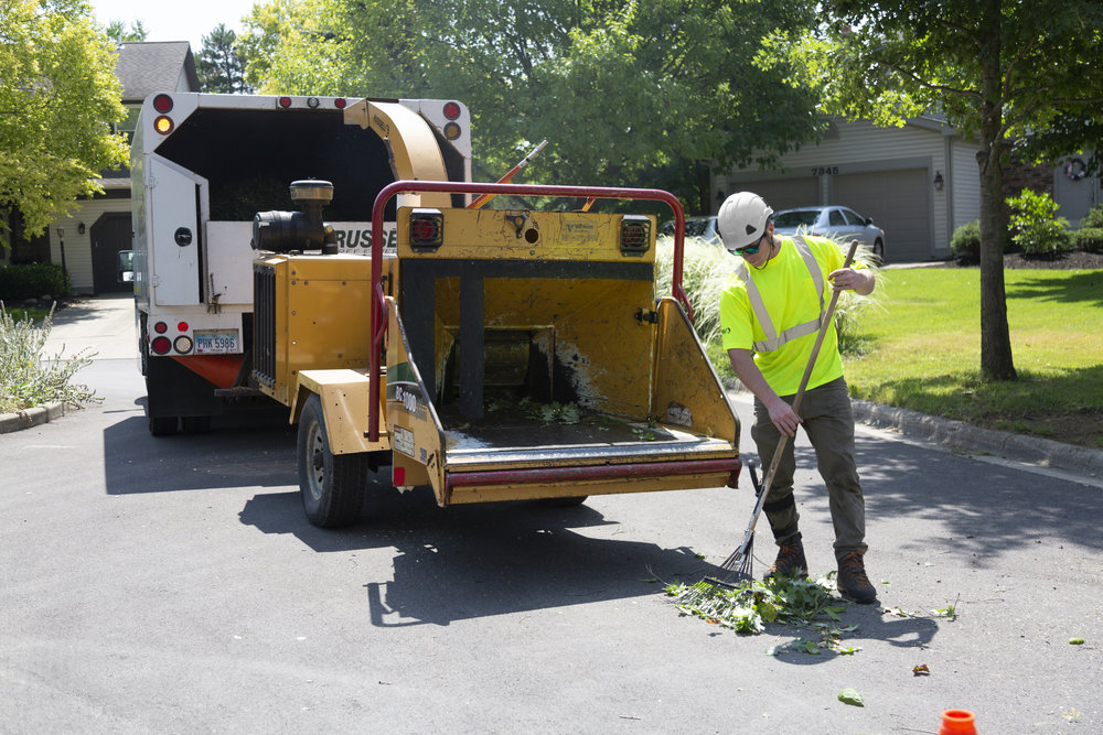 Tree Services   Municipal Tree Services    Learn More