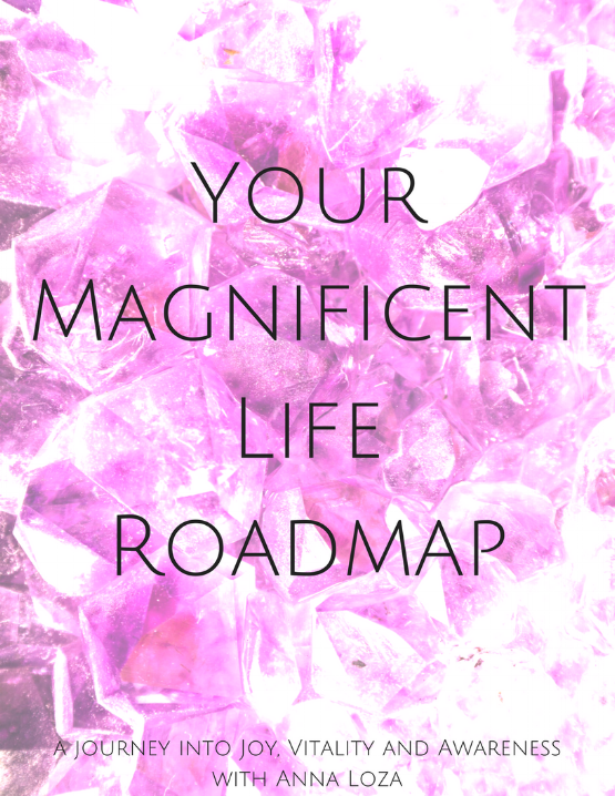 YourMagnificentLifeRoadmap.png