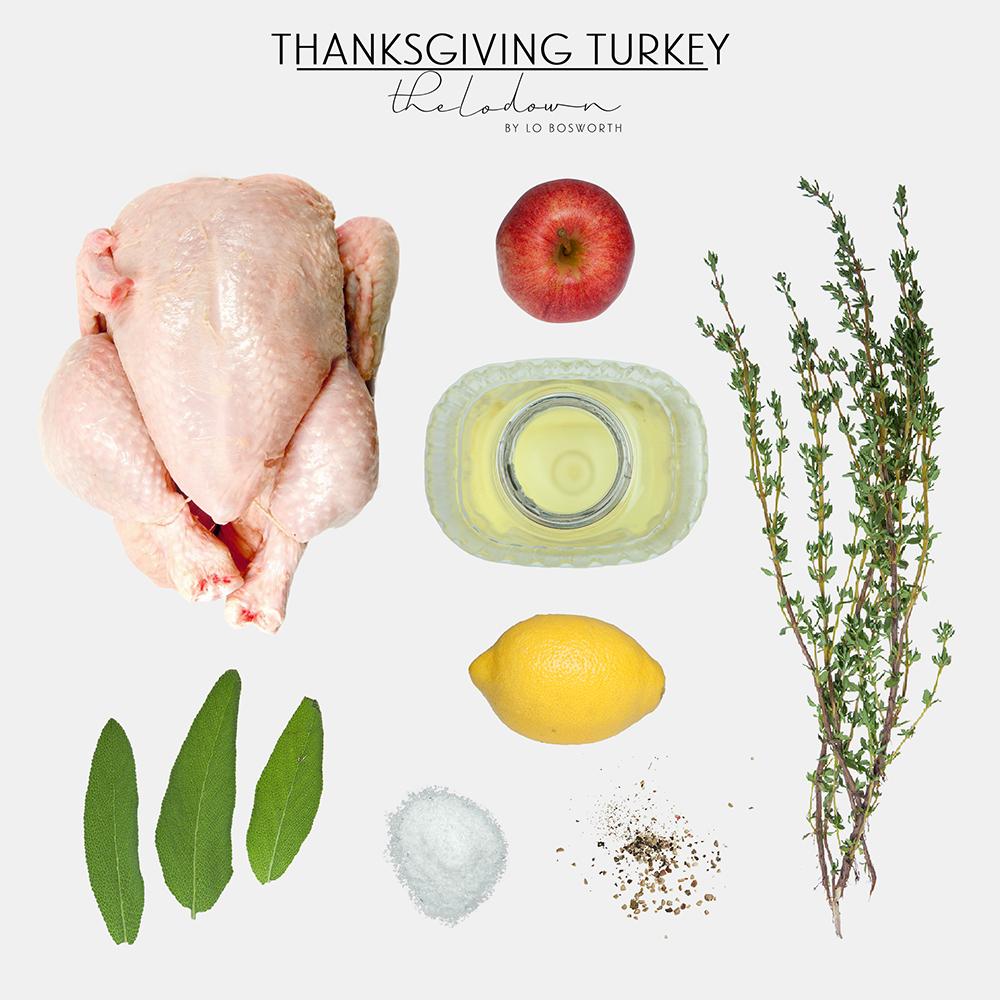Thanksgiving Turkey (1000x1000)
