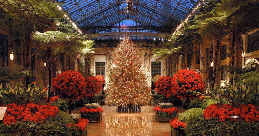 Photo from Longwood Gardens