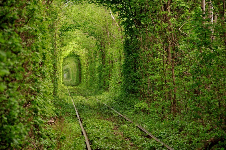 tunnel-of-love-2[2]