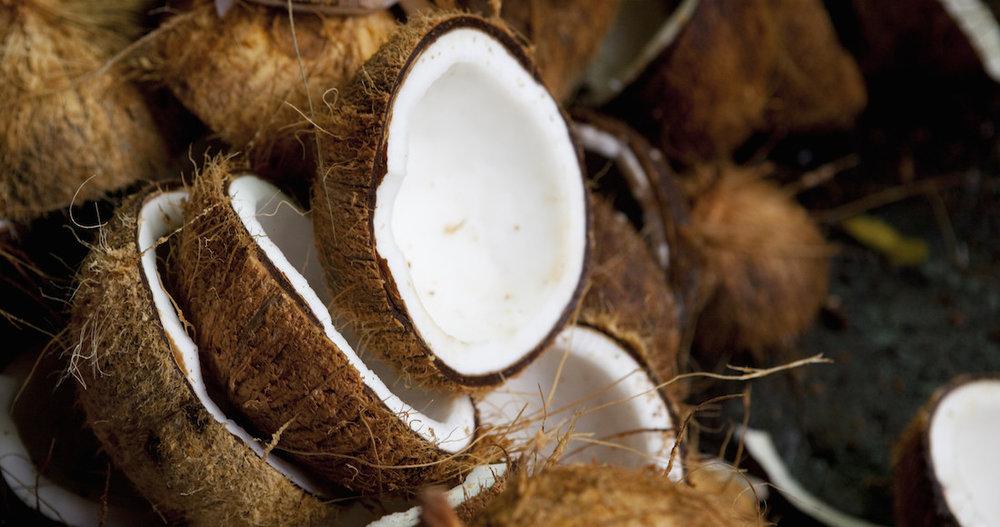 nuca-de-cocos-2.jpg
