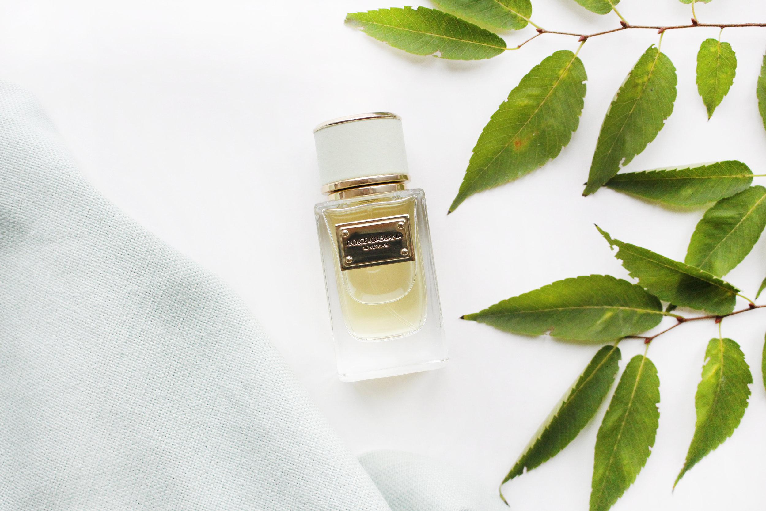 Notes: galbanum, jasmine, cistus labdanum, fig leaf accord, narcissus, jonquille absolute, neroli, geranium, vetiver, orris butter