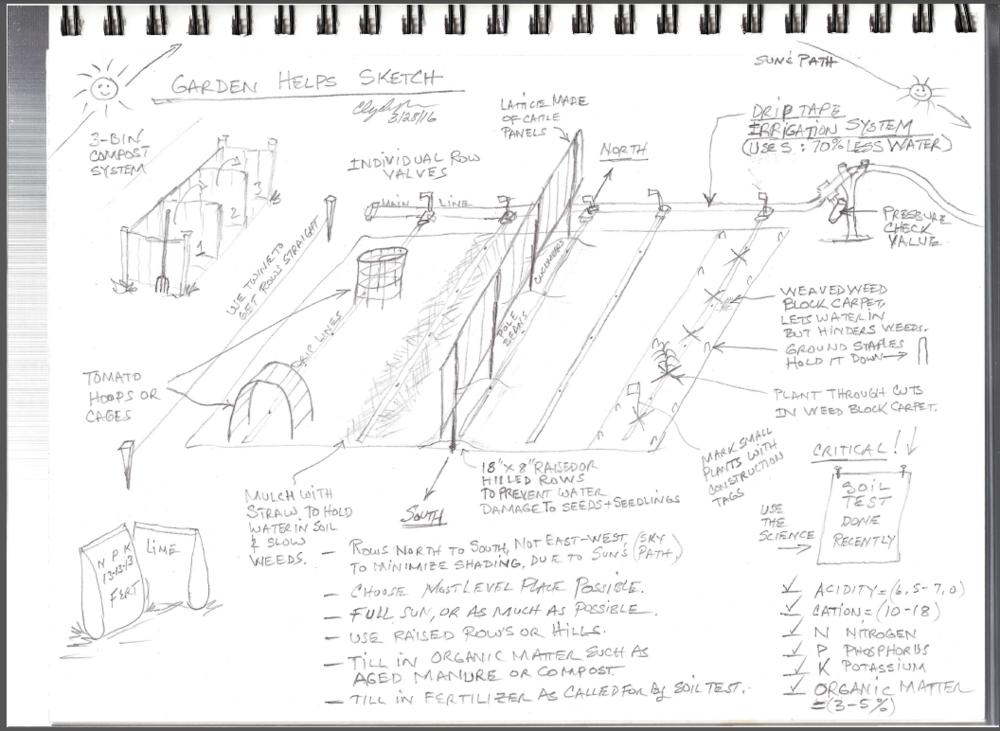 Helpful Gardening Ideas Sketch.PNG
