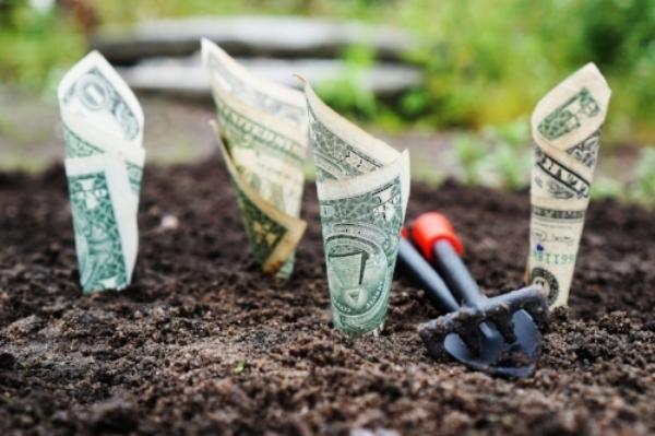money-1604921_1920.jpg