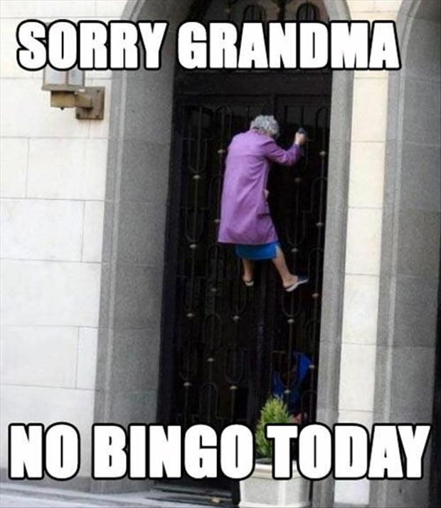 bingofunny-granny-no-bingo-today.jpg