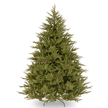 Norway Spruce - This traditional tree has dark green spiky needles and a beautiful Christmas tree scent.Although sometimes criticised for its needle drop, we cut our Norway Spruce trees daily. This means the trees have fantastic needle retention.0-6 ft | £226-7 ft | £277-8 ft | £328-9 ft | £379-10 ft | £4210-11 ft | £47