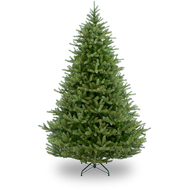 Fraser Fir - Frasers are generally a narrower tree which makes them perfect for a smaller room.With green silvery soft short needles and that classic Christmas tree scent, they are great for young families or people with less space.0-6 ft | £356-7 ft | £407-8 ft | £458-9 ft | £509-10 ft | £60