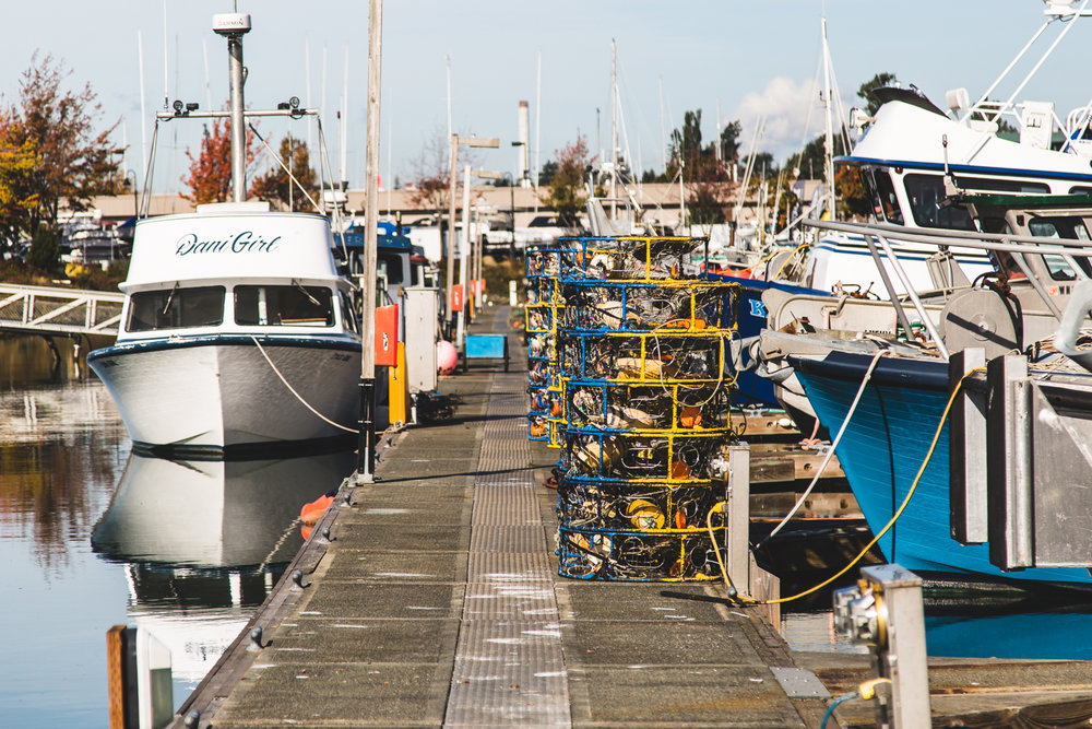 Commercial fishing is our specialty but... - We also supply the Utility, Industrial, Equine, Arborist, and other Specialty markets with quality Amercian made products.