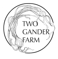 Two Gander Logo Final xhi res1b  (1).jpg